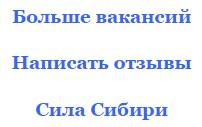 Сила Сибири и Керченский мост отзывы за 2016 год