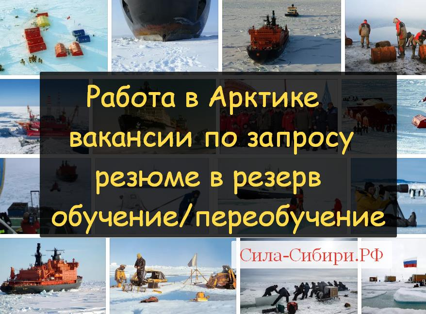 до 2029 января вакансии высылаются по Арктике на почту