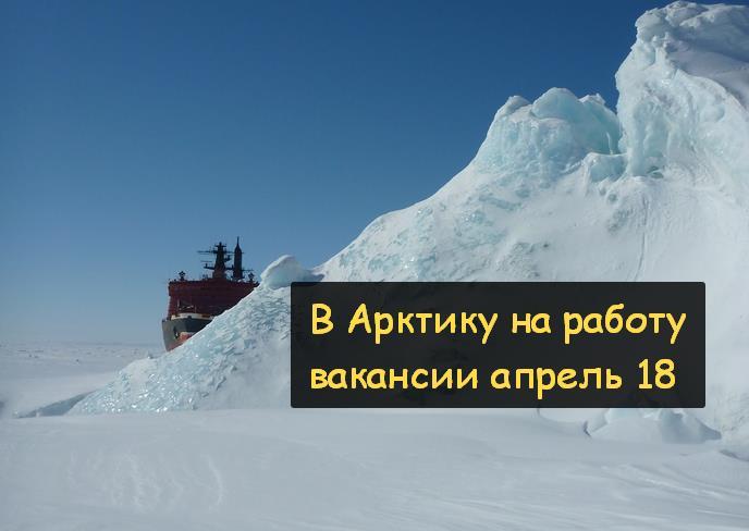 Работа Арктика апрель-май 2018