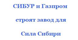 разнорабочий сила сибири-2 2016