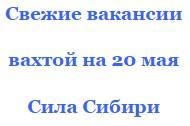Работа от ССР вакансии проверенные с жильем