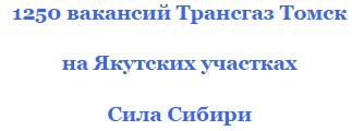 сила сибири-2 вакансии машинист бульдозера